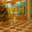 Fotografie 4, Muzeul National de Geologie