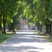 Fotografie 8, Palatul Mogoşoaia